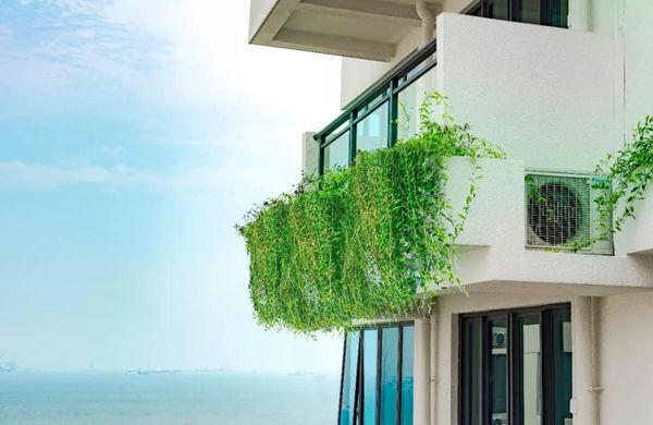 森林城市的垂直绿化