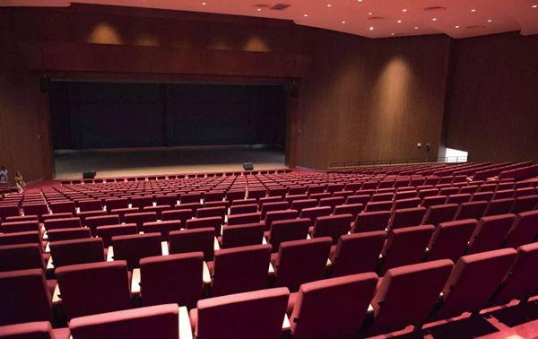 嘉德圣玛丽森林城市国际学校剧院实拍