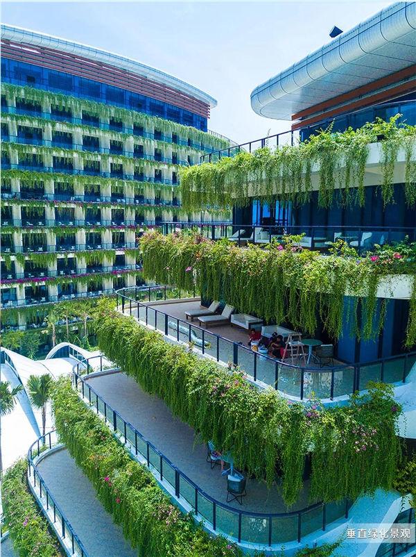 森林城市垂直绿化景观